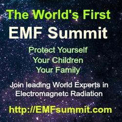 EMF%20Summit%20%20%20Social%20Media%201.jpg